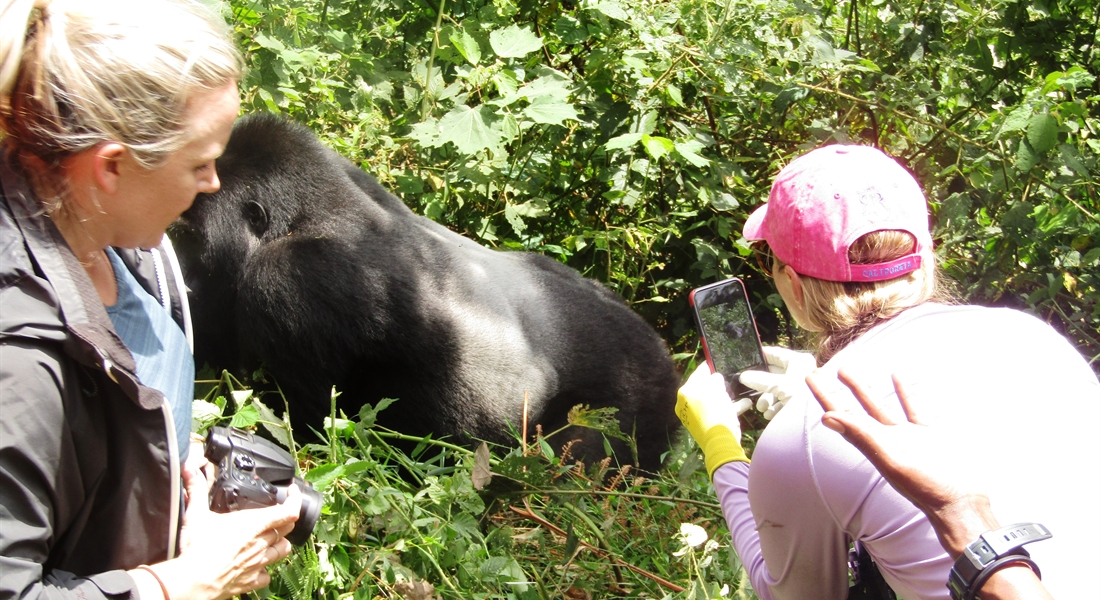 Women on Gorilla Trekking activity