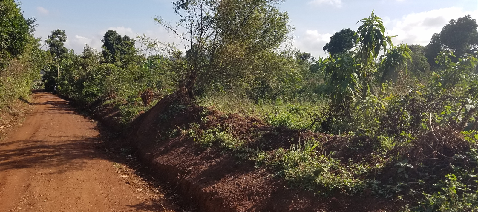 Plots of Land for Sale in Nsagu